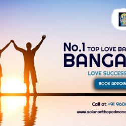 Best Astrologer in Bangalore - Astrology Services Solutions - saiananthapadmanabhaastrologer.com