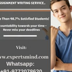 Best and Professional Assignment Help Services - Visit Expertsmind!