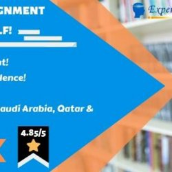 Acquire Best Saudi Arabia Assignment Help Services!